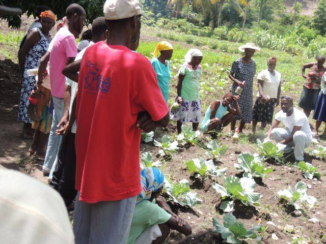Teaching-agriculture-to-population-to-help-avoid-starvation